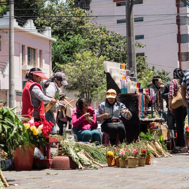 Domingo de Ramos Santa Teresita - La Mariscal